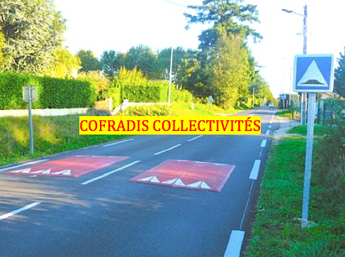 mise en situation du coussin berlinois de Cofradis Collectivités